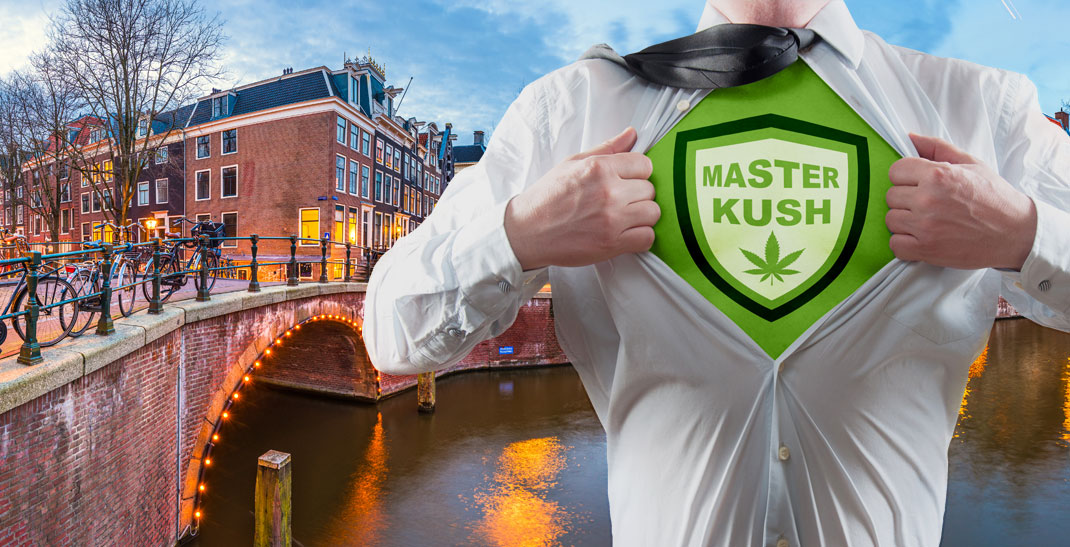Master Kush - Cannabis Strain Informatie