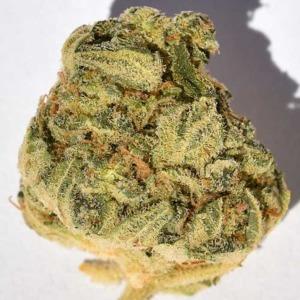 Bruce Banger - Big Head Seeds