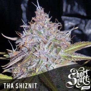 Tha Shiznit - Short Stuff