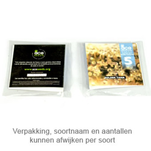 Golden Tiger feminised - Ace Seeds verpakking