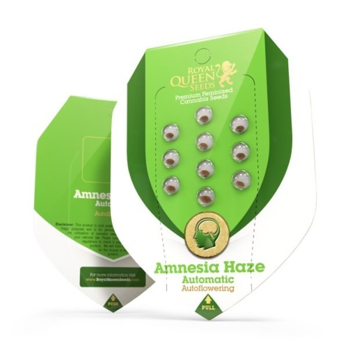 Amnesia Haze Automatic - Royal Queen Seeds verpakking