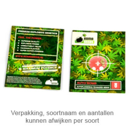 Buzz Bomb wietzaadjes van Bomb Seeds package