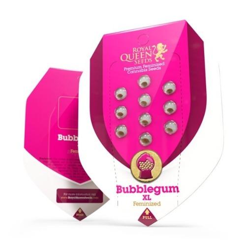 Bubblegum XL - Royal Queen Seeds verpakking