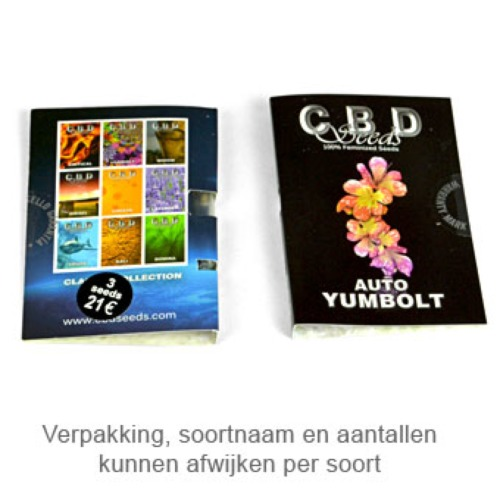 Auto Yumbolt - CBD Seeds package
