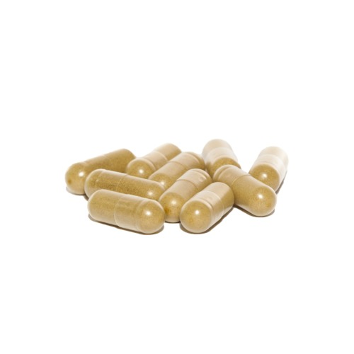 CBDA Booster capsules met vers gevriesdroogd hennep sap poeder