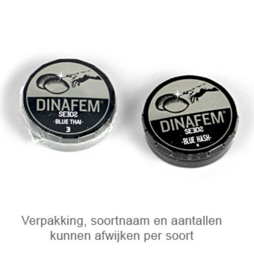 Sour Diesel Auto - Dinafem verpakking