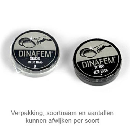 Amnesia CBD - Dinafem verpakking