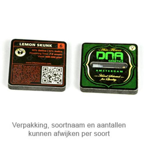 Lemon OG Kush - DNA Genetics verpakking