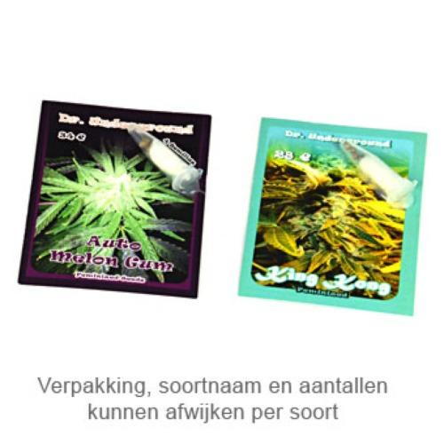 Chrystal Meth - Dr Underground verpakking