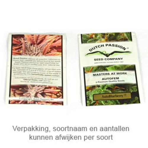Auto White Widow - Dutch Passion verpakking