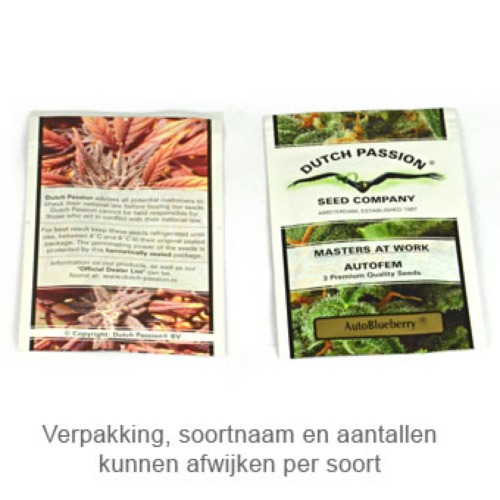 AutoBrooklyn Sunrise - Dutch Passion verpakking