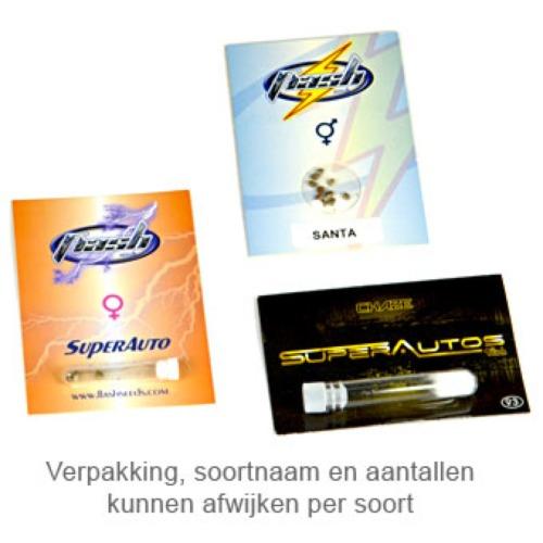 White Sirius - Flash Seeds package