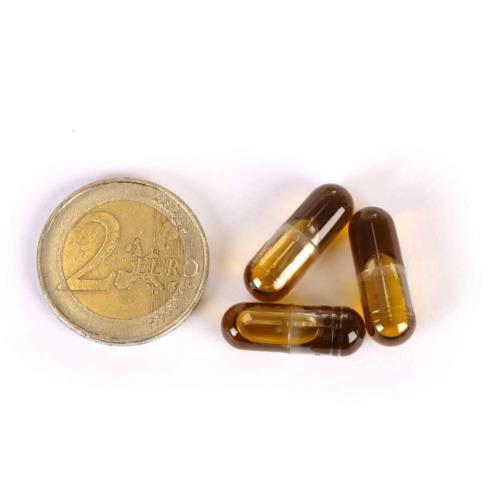 Het formaat van de biologische CBD 2,5% capsules van MediHemp