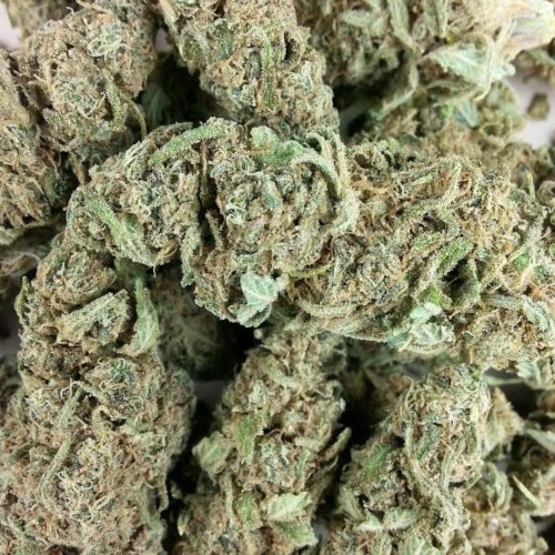 Euforia - Our private label close up weed