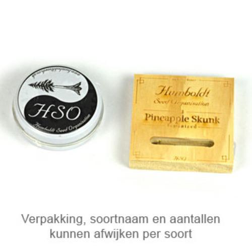 Dedoverde Haze - Humboldt verpakking