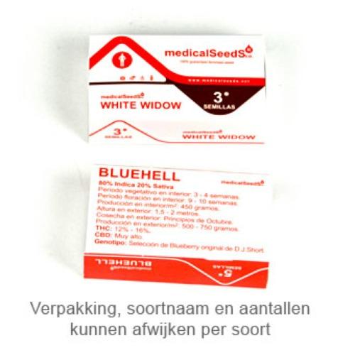 1024 - Medical Seeds verpakking