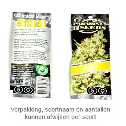 Jacky White - Paradise Seeds verpakking