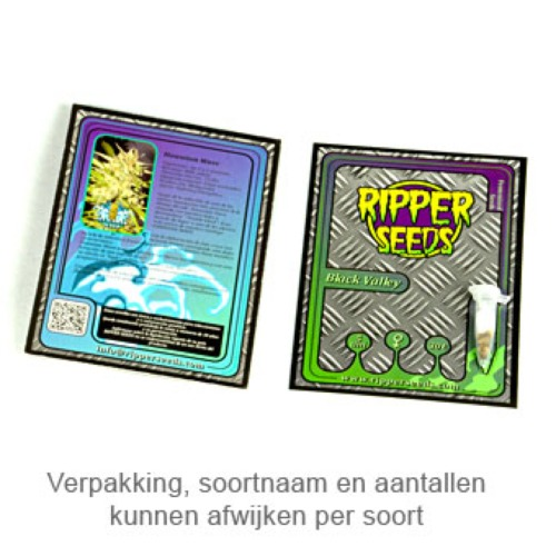 Black Valley - Ripper Seeds verpakking