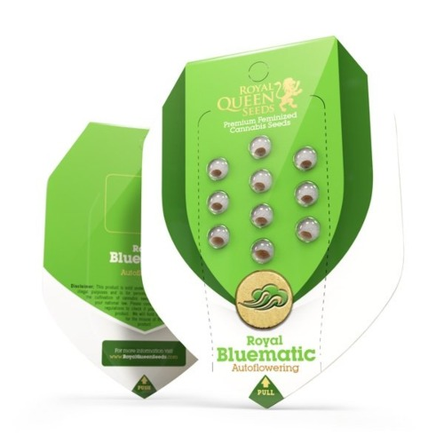 Royal Bluematic - Royal Queen Seeds verpakking