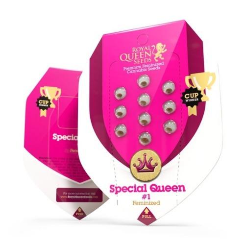 Special Queen #1 - Royal Queen Seeds verpakking
