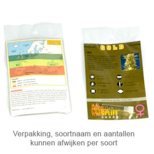 Blue Medi Kush - Spliff Seeds verpakking