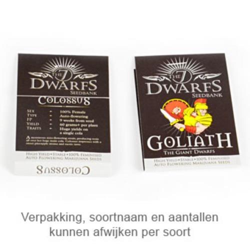 Gigantes - The 7 Dwarfs verpakking