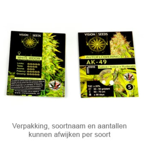 Crystal Queen - Vision Seeds verpakking