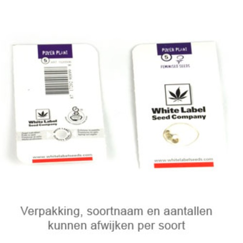 Purple Haze - White Label verpakking