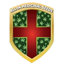 All-in Medicinal Seeds cannabis seeds
