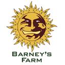 Barney's Farm cannabis seeds