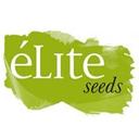 Elite Seeds cannabis seeds