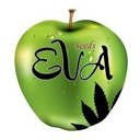 Eva Female Seeds cannabis seeds