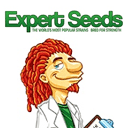 Expert Seeds cannabis seeds
