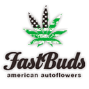 FastBuds cannabis seeds