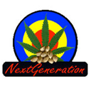 Next Generation cannabis seeds