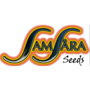 Samsara Seeds cannabis seeds