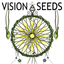 Vision Seeds cannabis seeds