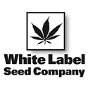 White Label Seeds cannabis seeds