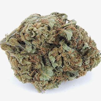OG Kush is een uitzonderlijk sterke marijuana.
