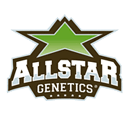 Allstar Genetics wietzaadjes