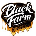 Black Farm Genetix wietzaadjes