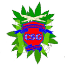 Connoisseur Genetics cannabis zaden