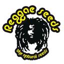 Reggae Seeds wietzaadjes