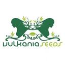 Vulkania Seeds wietzaadjes