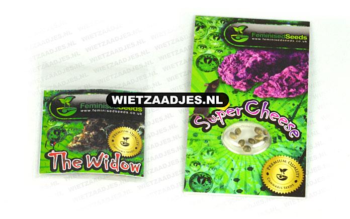 Feminised Seeds verpakking