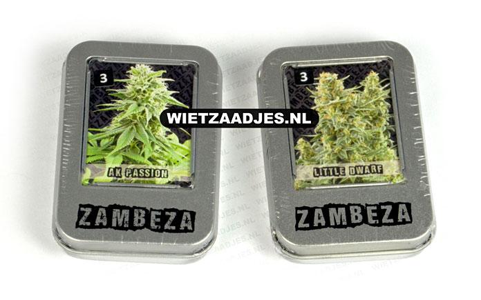 Zambeza Seeds verpakking