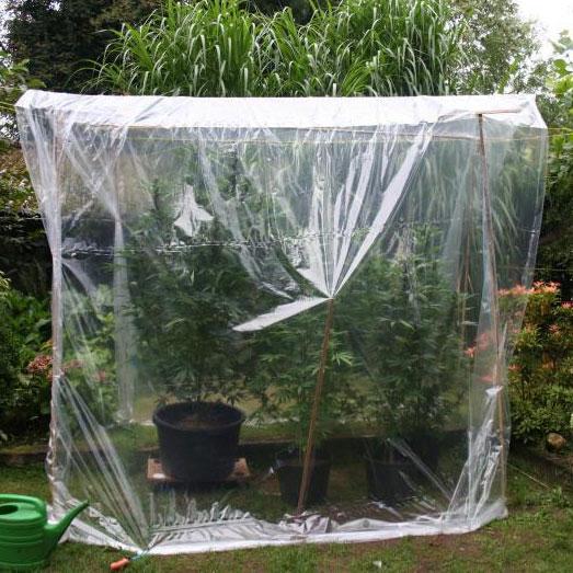Bescherming tegen de regen met plastic over waslijnen.