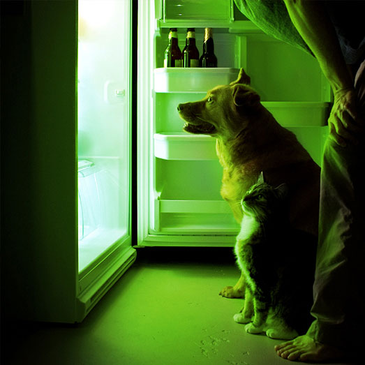 Wietzaadjes langdurig bewaren in de koelkast.