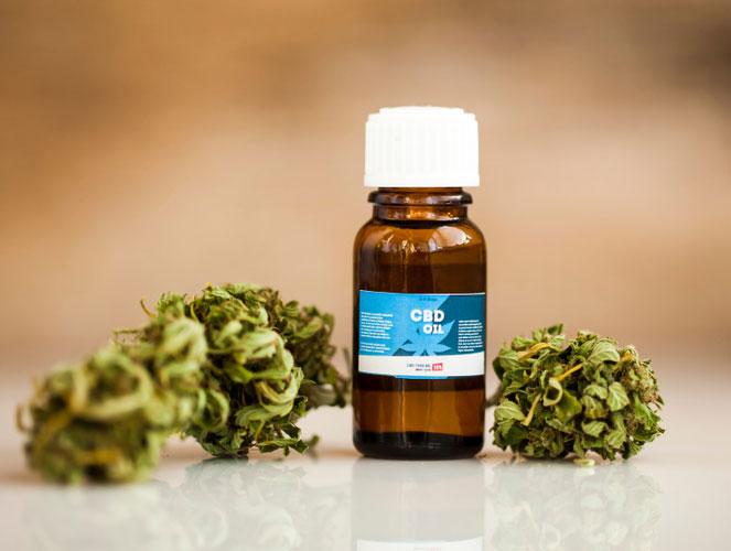 CBD olie gemaakt van CBD rijke cannabis.